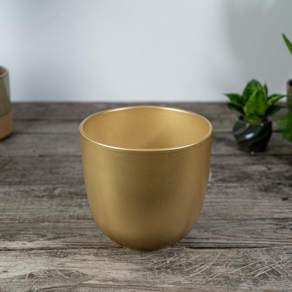 oslonka- golden-mat